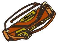 Looper Bag